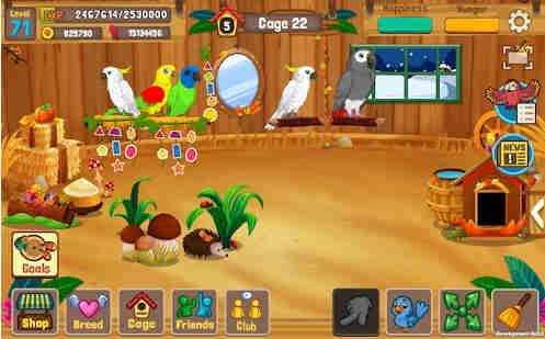 Game Memelihara Burung Android