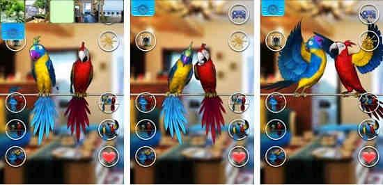 Game Pelihara Burung
