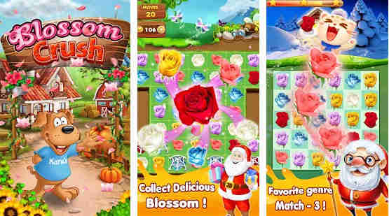 Blossom Crush - Puzzle Game